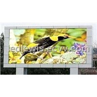LED SCREEN(TDL10-101)