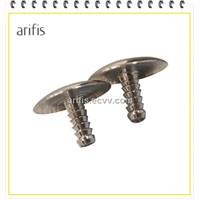 Mushroom Head Screw
