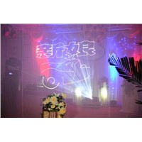 Animation Laser Light for Wedding / Party / Ceremony