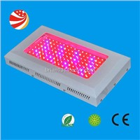 red blue led grow light