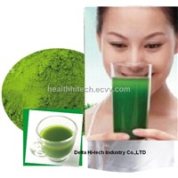 Young Wheat Grass Powder