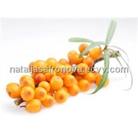 High quality Natural Sea buckthorn / Hippophae cosmetics