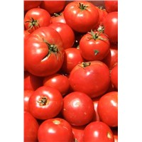 Fresh Tomato Available For Sale