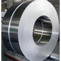 304 Stainless Steel Strip with 0.2mm-80mm Thickness for Decoration
