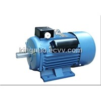 Electric Motor (YC/YCL Series)