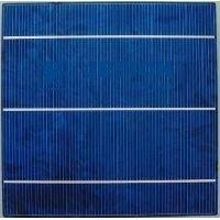 Highest Efficiency polycrystalline solar cell with lower price and 156mm