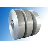 J4/201 Cold Rolled Stainless Steel Strip/ Band