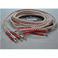 Kimber Kable 8TC Audiocable Hifi Speaker Cable