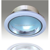 LED DOWN LIGHT()