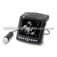 B mode ultrasound scanner for Vet Use->MSU1