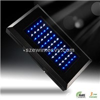 Coral LED Aquarium Light 55x3W