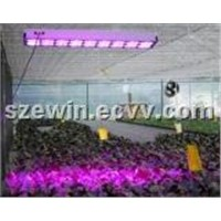 High Power 144*3W LED Hydroponic Lighting for Horticulture