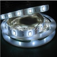 IP65 SMD Waterproof Flexible 5050 LED Strip Light