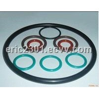 Interchangeable O Ring for Oil Drilling Mud Pump / Oil Pump