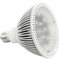 LED Spot Light (HY-PAR38-12B4C)