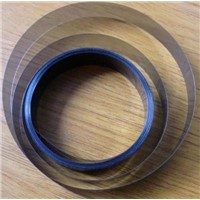 Large Format Printer Encoder Strip(raster)