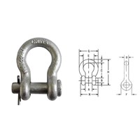 Pin shackle