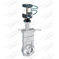 Pneumatic High Vacuum Gate Valve