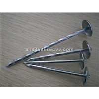 Umbrella Head Roofing Nails with Smooth/Twisted Shank, Various Diameters and Lengths are Available