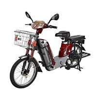 Electric bicycles - 114DC
