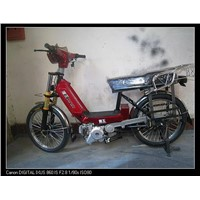 electric bike(da tian e)