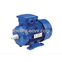 Electric Motor (MS Series)