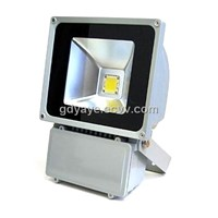 80W Outdoor LED Garden Lights (YAYE- SD80WB26A)