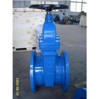 (ANSI)Cast Iron Gate Valve(NRS)