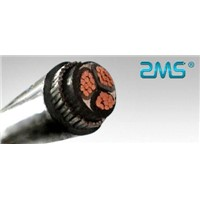 Concentric Cable