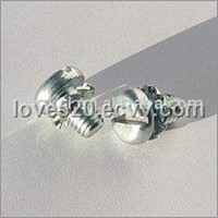 Screws with Washer Sets (DIN6900)