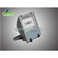 Flood LightLCL-PL004