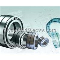 INA SL045040-PP Cylindrical Roller Bearings