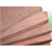 Poplar Okoume Commercial Plywood