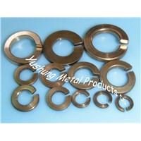 Silicon bronze & phosphor bronze spring washer