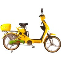 TDL183Z-9 ELECTRIC BIKE