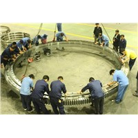 THB three row cylindrical roller slewing ring bearings for shipyard cranes