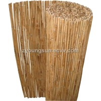 Bamboo-Reed Fence