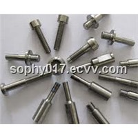 Titanium Fastener/Screw