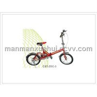 Chaosite Folding Bicycle