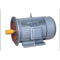 Y Series Three Phase Electric Motor/Three Phase Induction Motor