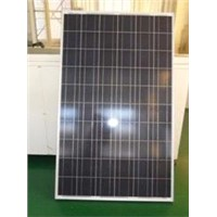 230W Poly-Crystalline Solar Panels