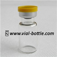 2ml Sterile Glass Vial with Septum and Cap