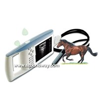 Digital Palmtop Vet Ultrasound Scanner (BW520V)