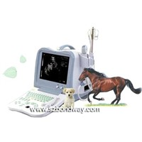 Digital Portable Veterinary Ultrasound Scanner (BW530V)