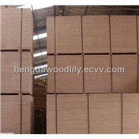 Film Faced Shuttering Plywood/Construction Formwork Plywood/Concrete Formwork Plywood,