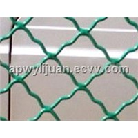 Galvanized /PVC/Stainless Beautiful Grid Wire Mesh