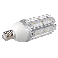 LED Garden Light (YL-GL-30W)