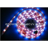LED Strip 3528R60-8 Single Color or RGB Color
