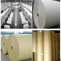 Low weight coated paper (LWC paper)