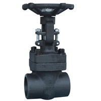 Class 800 Forged Steel Gate Valves